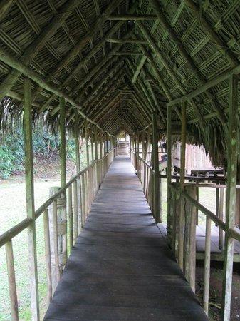 Pacaya Samiria Amazon Lodge : walkway to cabins