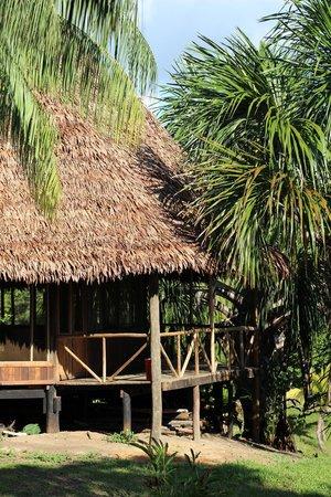 Pacaya Samiria Amazon Lodge : lodge porch