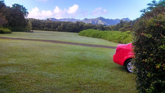 Aloha Cottages : Morning view from the property. Car can be parked under a tree right around the corner.