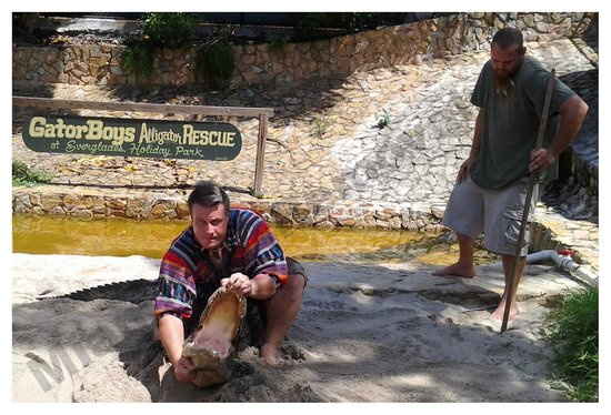Fort Lauderdale, FL: GARY & JOSH DOING A 'FLORIDA SMILE' W AN AMERICAN ALLIGATOR @ 'THE GATOR BOYS ALLIGATOR RESCUE'