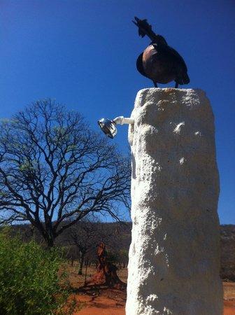 Matunda Guest Farm (Gastefarm): Pooldusche