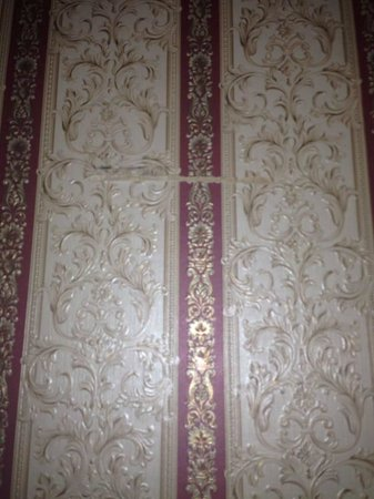Adelphi Hotel : Dated and ripped decor