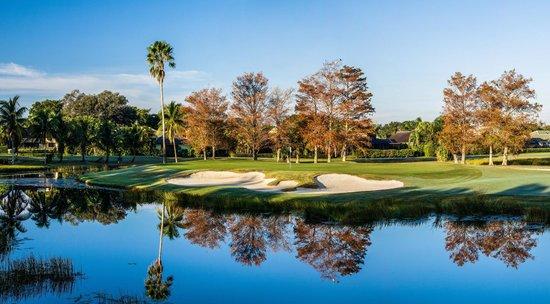 PGA National Resort U0026 Spa: The Fazio Golf Course