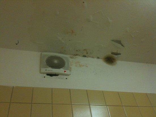 Hotel La Fenice Et Des Artistes: Tetto del bagno con segni di perdite