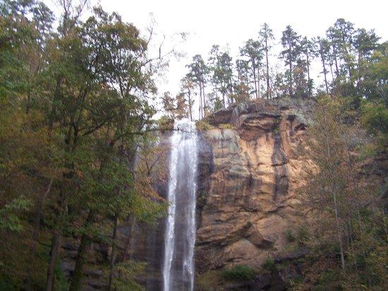 Toccoa Falls: A view of the falls.