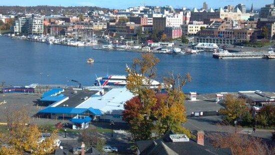 Harbour Towers Hotel & Suites: Victoria