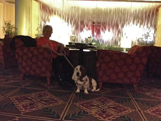 Capital Plaza Hotel: Comfortable chairs and table by the water feature - Dogs are allowed to dine with you here!