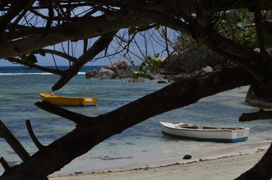 Blue Lagoon Chalets : anse la mouche