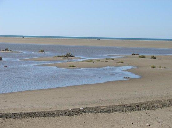 Camping de la Brise : spiaggia nella riserva