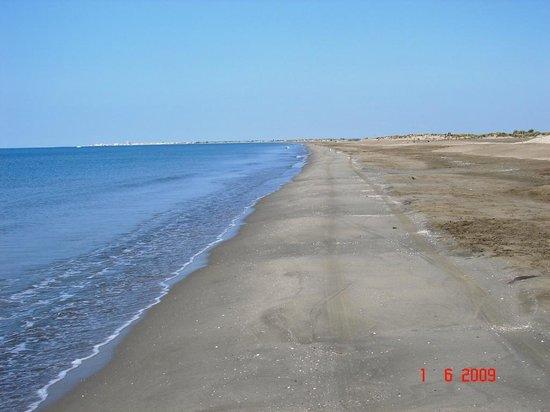 Camping de la Brise : Spiaggia