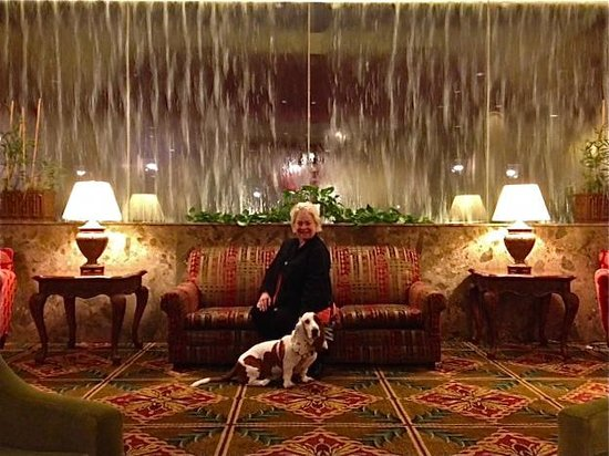 Capital Plaza Hotel: Stunning lobby with old time charm.  Perfect for people watching with your dog!