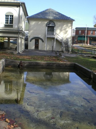 Berkeley Springs State Park: Another view of the Bath Houses