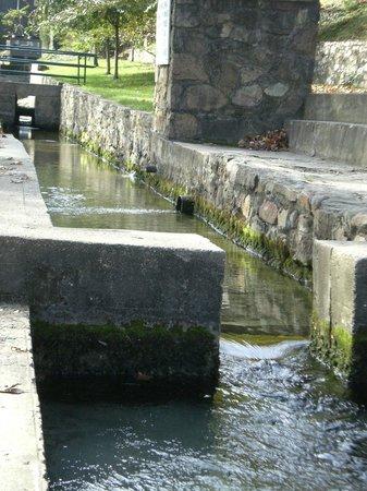 Berkeley Springs State Park : Refreshing, clear spring water