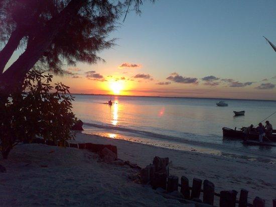 Michamvi Sunset Bay Resort: nightly sunset