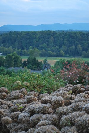 The Inn on Biltmore Estate: A view of the grounds