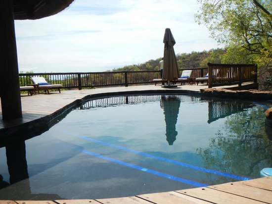 Tshwene Lodge: Pool