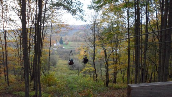 Hope Lake Lodge & Conference Center: Zip Lining in the Fall trees!