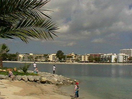 Playa de Alcudia: View from Marina