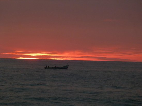 Molly's Retreat: Samudra Evening