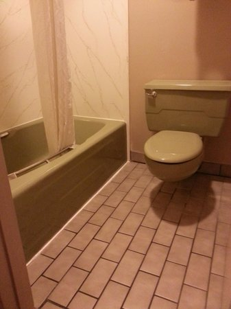 Rodeway Inn & Suites Landmark Inn: Bathroom
