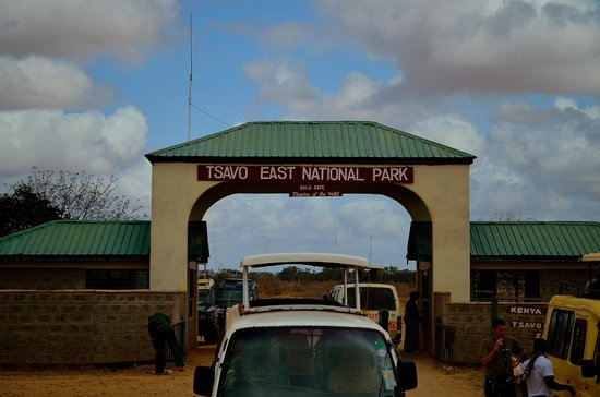 Morris Safari Kenya - Day Tours: 14