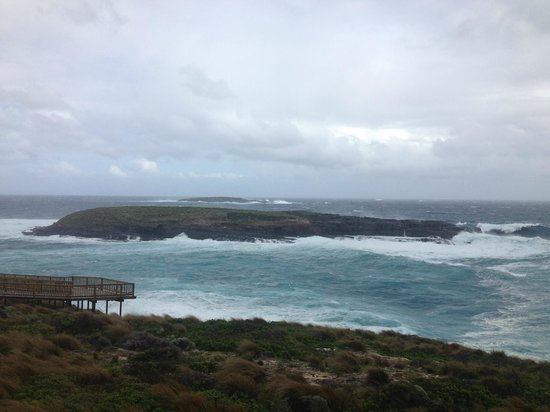 Exceptional Kangaroo Island : Admirals Arch