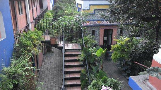 Hotel Casa Arnel : jardines y patios interiores