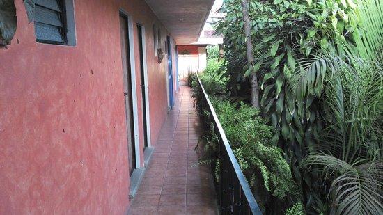 Hotel Casa Arnel : pasillos