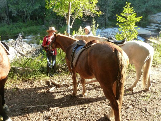 Garden Route Horse Trails: Taking a break at the waterfall