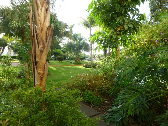 Porto Mare Hotel: View of the extensive gardens