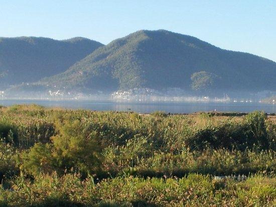 Bambu Apartments: View across the bay