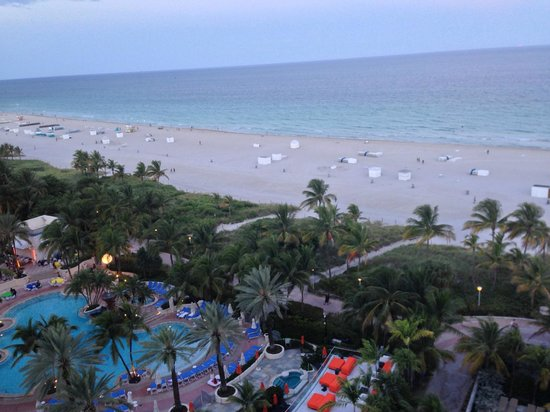 Royal Palm South Beach Miami A Tribute Portfolio Resort Pool Shown Lowes Hotel