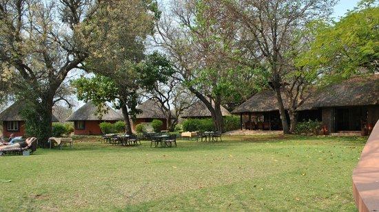 Mohlabetsi Safari Lodge : Vue des bâtiments communs & des rondavelles