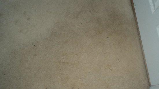 High Corner Inn: more stains!
