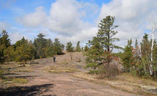 Pincushion Mountain Trail System : Top of Pncushion Mountain