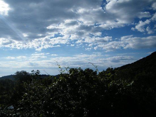 Agriturismo Il Pettirosso: vista dalla nostra camera.