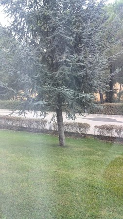 Girona Aeropuerto: giardino
