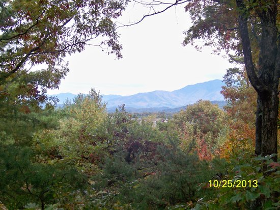All Seasons Cabin Rentals: View from Hot Tub