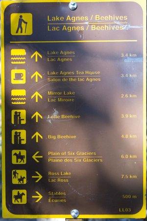Lake Agnes Teahouse: 3.4 km Hike To Lake Agnes From Lake Louise