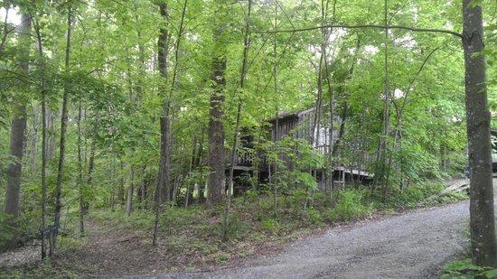 Laurel Ridge Cabins: Cabin 1
