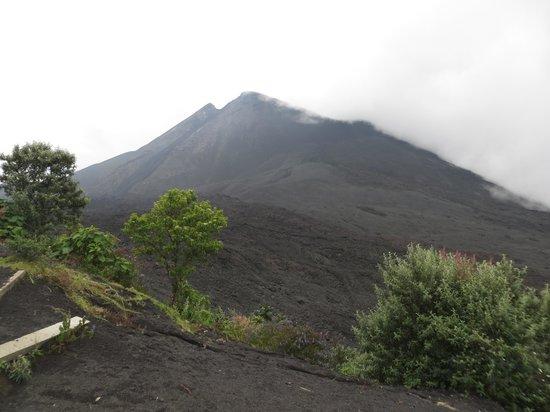 Pacaya Volcano: view from hike