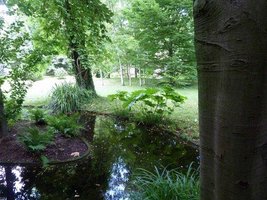 Albert Kahn Musee et Jardins : pond