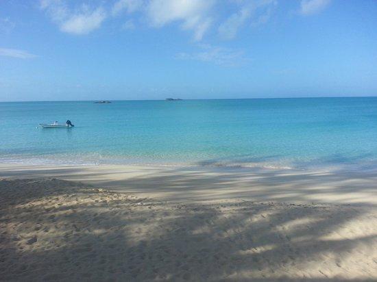 Fernandez Bay Village: The beautiful beach