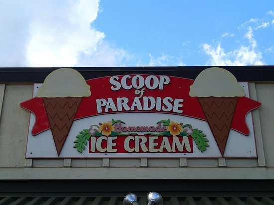 Scoop of Paradise: Scoops of Paradise