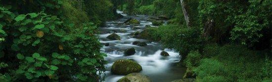Villas de Oros: el rio