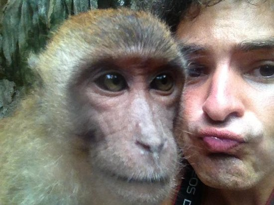 Railay Beach : Selfie With Monkey