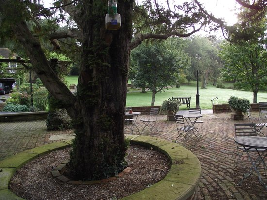 PowderMills Country House Hotel: View from our room
