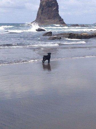 Benijo - Foto van Playa de Benijo, Almaciga - TripAdvisor
