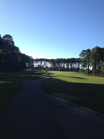 The Pines at Sanctuary Cove: 2nd Hole