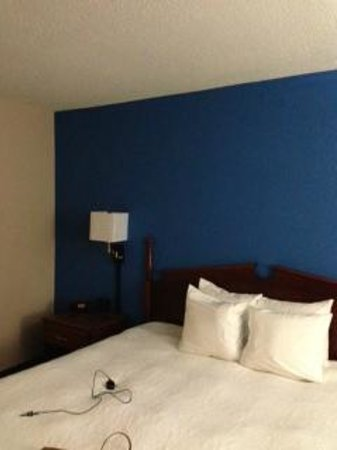 Hampton Inn Collinsville: Room Colors